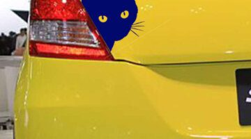 free-shipping-cat-face-with-whiskers-peeking-car-sticker-for-truck-window-bumper-suv-door-vinyl
